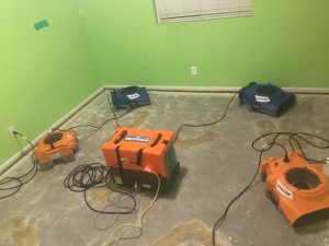 Drying Out A Bedroom During A Mold Removal Job
