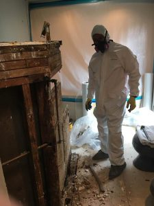 A Technician Implementing Mold Remediation After A House Flood