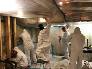 Technicians Mitigating Water Damage and Mold